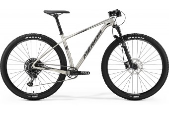 Merida Big Nine NX Edition Titanium 2019