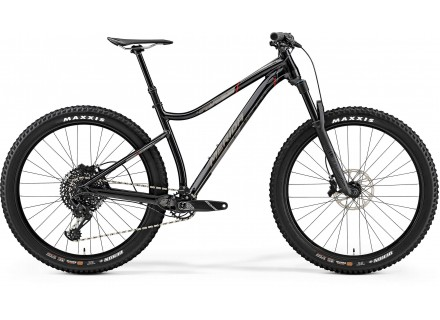 Merida Big Trail 800